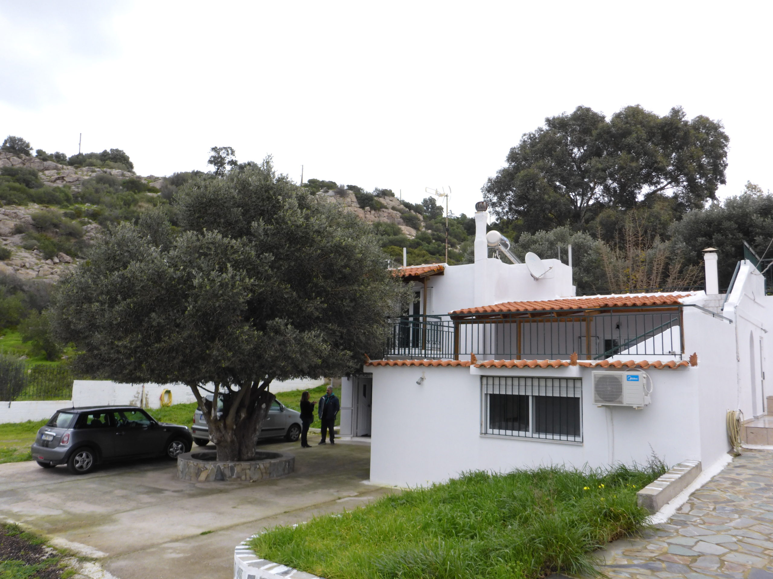 Investment Property for sale in Thymari